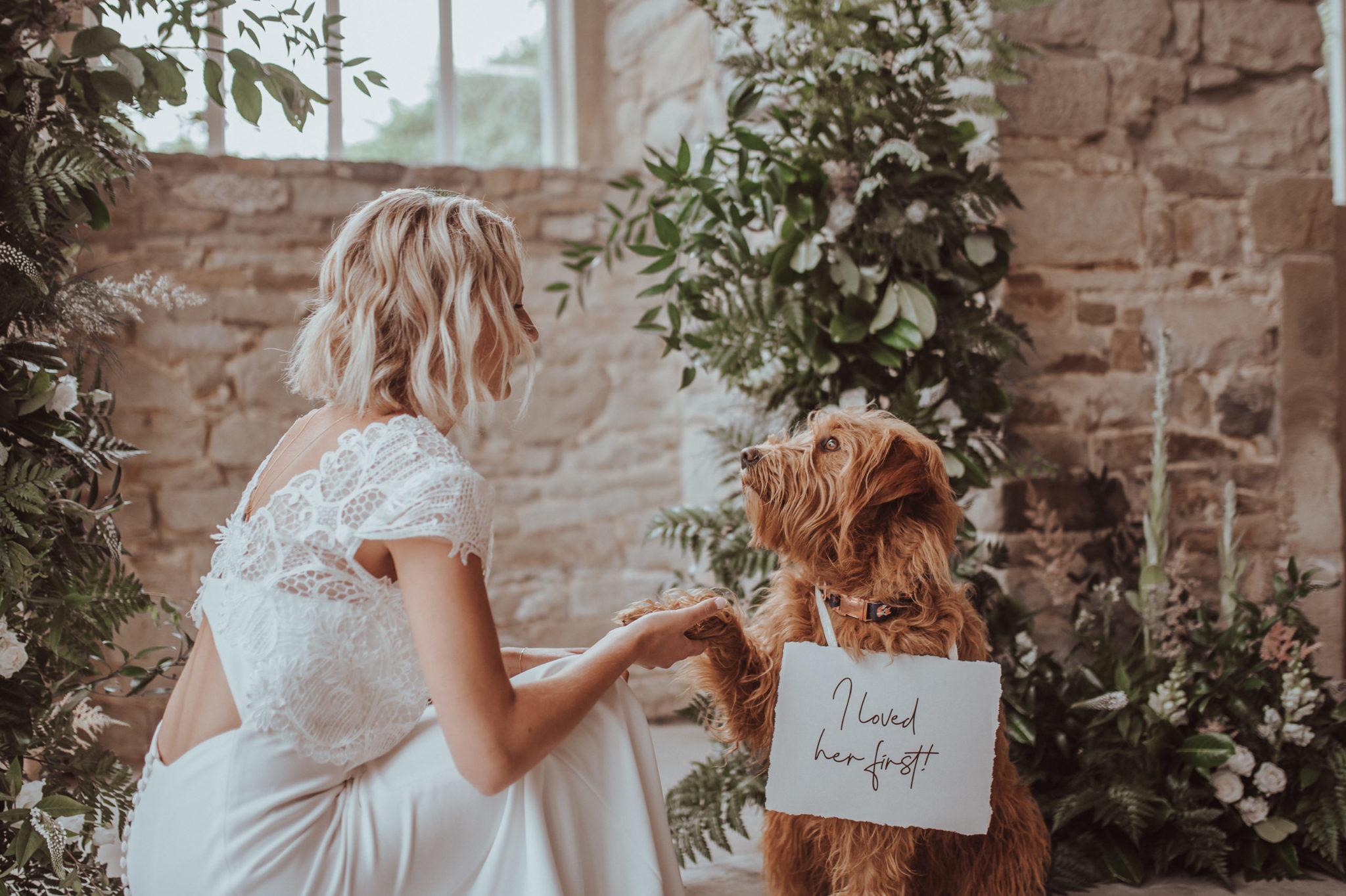 Braut und ihr Hund kurz vor der Zeremonie |RedeKunstWerk Die Ausbildung für Freie Redner